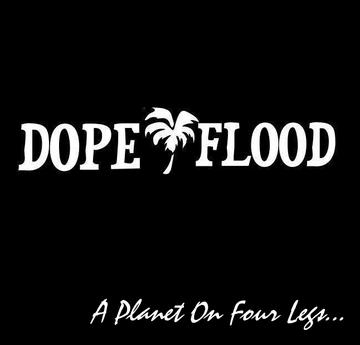 Uncertain , by Dope Flood on OurStage