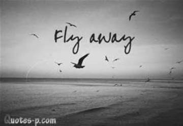 Fly Away, by FeddyBoy on OurStage